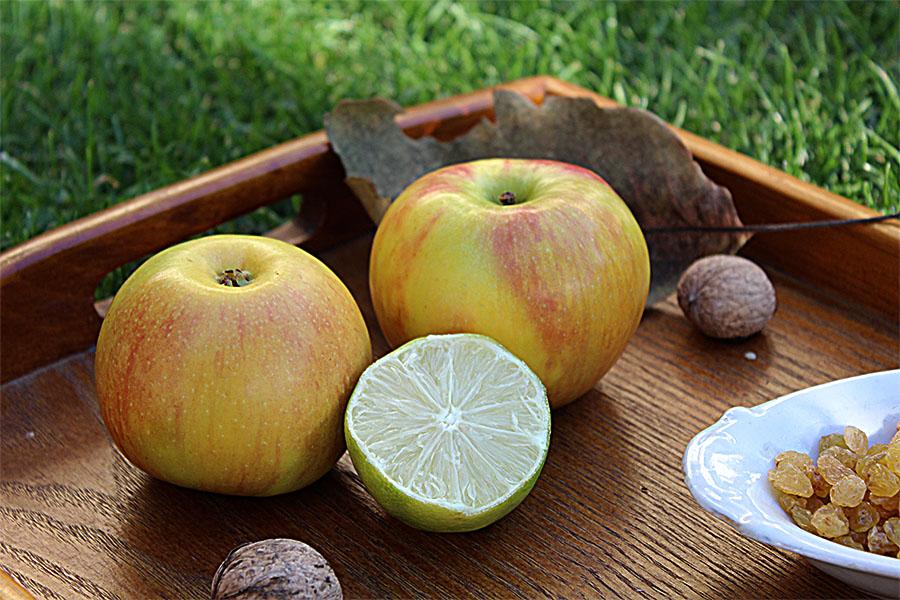 apple-pie-smoothie-002
